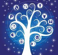 2130408 1 horoscop arboricol